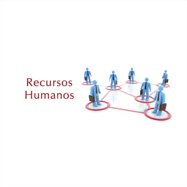A importância da Gestão de Recursos Humanos